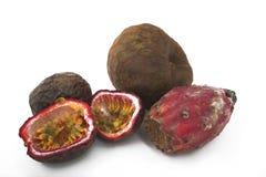 Gruppo esotico della frutta Fotografia Stock