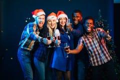 Gruppo felice di amici che toccano i glases a vicenda fotografia stock libera da diritti