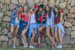 Gruppo felice di anni dell'adolescenza del denim di modo Fotografie Stock