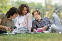 Gruppo felice di studenti multietnici che studiano all'aperto Fotografia Stock Libera da Diritti