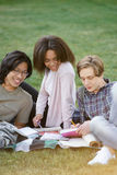 Gruppo felice di studenti multietnici che studiano all'aperto Immagini Stock