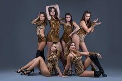 Gruppo femminile di ballo in costumi da bagno sexy del leopardo Fotografia Stock Libera da Diritti