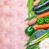 Gruppo fresco di verdure Immagini Stock