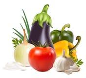 Gruppo fresco variopinto di verdure. illustrazione di stock