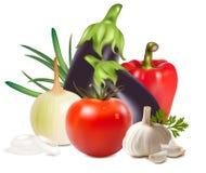 Gruppo fresco variopinto di verdure. illustrazione vettoriale