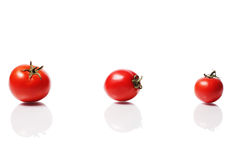 Gruppo maturo di pomodori Fotografia Stock