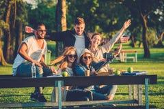 gruppo Multi-etnico di amici che prendono un selfie con il cellulare Fotografie Stock