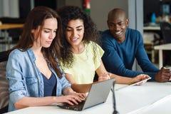 gruppo Multi-etnico di giovani che studiano con il computer portatile Immagine Stock Libera da Diritti