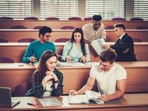Gruppo multinazionale di studenti allegri che prendono una parte attiva in una lezione mentre sedendosi in una conferenza corrido Fotografia Stock
