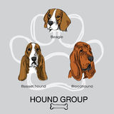 Gruppo pack1 del segugio del cane del fronte royalty illustrazione gratis