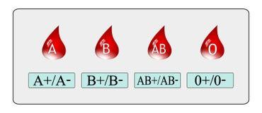 Gruppo sanguigno Fotografia Stock