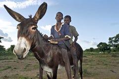 Gruppstående av unga ghananska herdar Arkivfoto