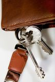 grupptangenter piskar plånboken Royaltyfri Foto