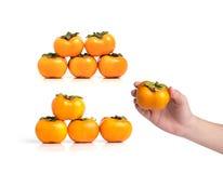 Grupy dojrzały persimmon na białym tle Obraz Royalty Free