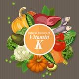 Grupy zdrowa owoc, warzywa, mięso, ryba ilustracji