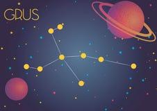Grus созвездия Стоковая Фотография