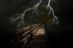 Gruselige dunkle Nacht im Wald auf Halloween Stockbild