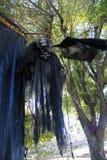 Gruselige skeleton Krähe, die vom Baum hängt Lizenzfreie Stockbilder