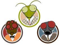 Gruseliger Insekten- oder Spinnenkopf Stockfoto