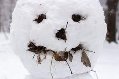 Gruseliges Schneemanngesicht stockfotografie