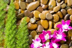 Grusstenen vaggar den Spa massagen Fotografering för Bildbyråer