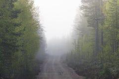 Grusväg i dimma Arkivfoton