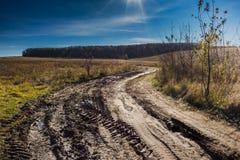 Grusväg i höstfältet Royaltyfri Foto