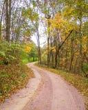 Grusväg i nedgång med gula träd royaltyfri bild