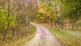 Grusväg i nedgång med gula träd arkivfoton