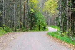 Grusväg i skogen Arkivfoton