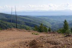 Grusväg i skogen för Tanana dalstat, Alaska Royaltyfri Bild