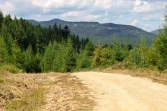 Väg i bergen Fotografering för Bildbyråer