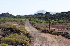Grusväg i Spanien, Canarian öar Delande linje Cykelspår Fotografering för Bildbyråer