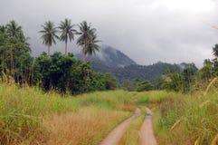 Grusväg i tropisk vildmark Arkivfoto