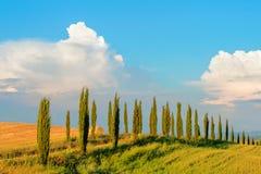 Grusväg i Tuscany, Italien Fotografering för Bildbyråer