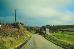 Grusväg på lutningspunkt, södra ö, Nya Zeeland arkivbilder