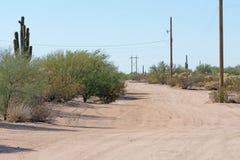 Grusväg till och med öknen med tunga vegetation och kraftledningar royaltyfri fotografi