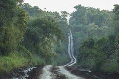 Grusväg till och med djungeln Arkivfoto