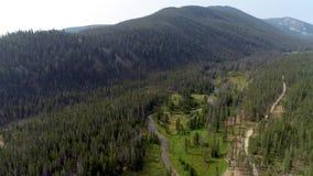 Grusvägen följer den samma banan som en flod till och med en grön skog arkivfilmer