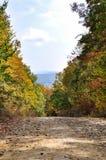 Grusväg i höstskogen Arkivbild