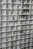 Grutas de Longmen Fotografía de archivo libre de regalías