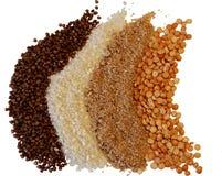 Grutten van tarwe, boekweit, rijst, erwten Op een witte achtergrond stock afbeelding