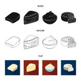 Gruyere, camembert, mascarpone, gorgonzola.Different types of cheese set collection icons in black,flat,outline style. Vector symbol stock illustration Royalty Free Stock Photography