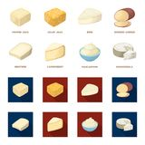 Gruyere, camembert, mascarpone, gorgonzola.Different types of cheese set collection icons in cartoon,flat style vector. Symbol stock illustration Royalty Free Stock Photo