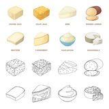 Gruyere, camembert, mascarpone, gorgonzola.Different types of cheese set collection icons in cartoon,outline style. Vector symbol stock illustration Stock Photos