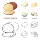 Gruyere, camembert, mascarpone, gorgonzola.Different types of cheese set collection icons in cartoon,outline style. Vector symbol stock illustration Stock Photo