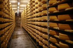 Gruyere cheese Royalty Free Stock Images