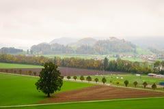 Gruyeres, Svizzera Fotografia Stock