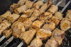 Gruzińska kuchnia kebabs Kulinarny mięso na węglach zdjęcia royalty free