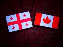 Gruzin flaga z kanadyjczyk flaga na drzewnym fiszorku odizolowywającym fotografia royalty free